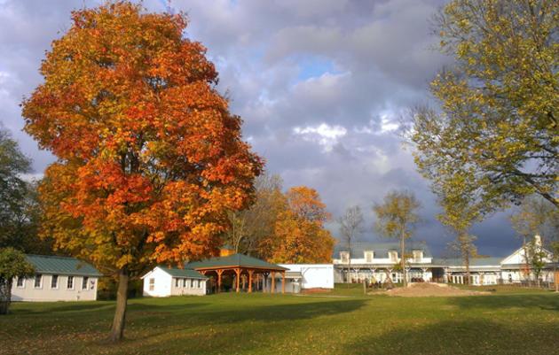 Center, Farm & Sanctuary