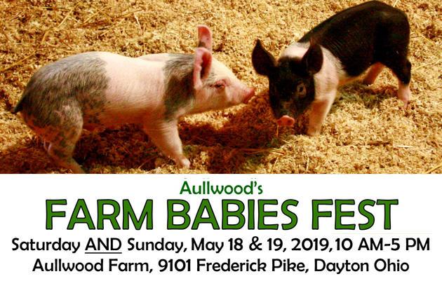 Farm Babies Fest