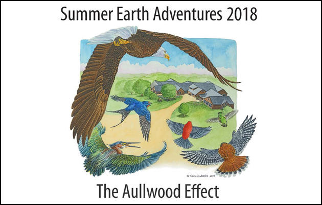 Summer Earth Adventures