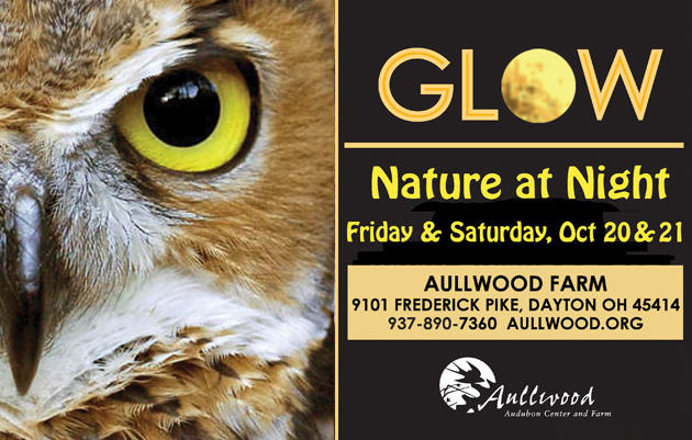 GLOW: Nature at Night